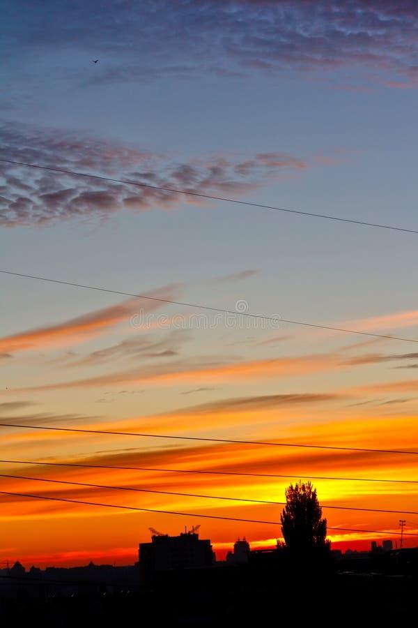 Download Burning sunrise over city stock photo. Image of beautiful - 21495542