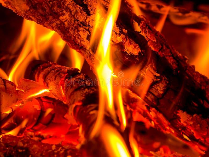 burning trä arkivbilder