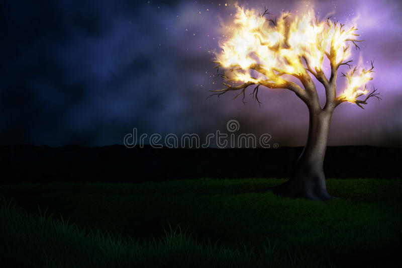 Burning Tree. Illustration of a burning tree in a field of grass under a hazy night sky royalty free illustration