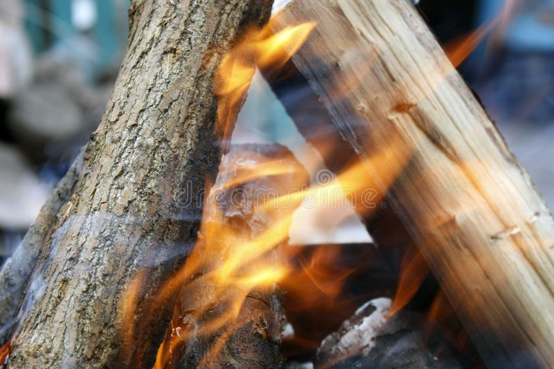 Burning tree in the grill. Bonfire on the grill with smoke. Arson or natural disaster. Bonfire close. Fire in nature. Campfire. Burning tree in the grill royalty free stock photos
