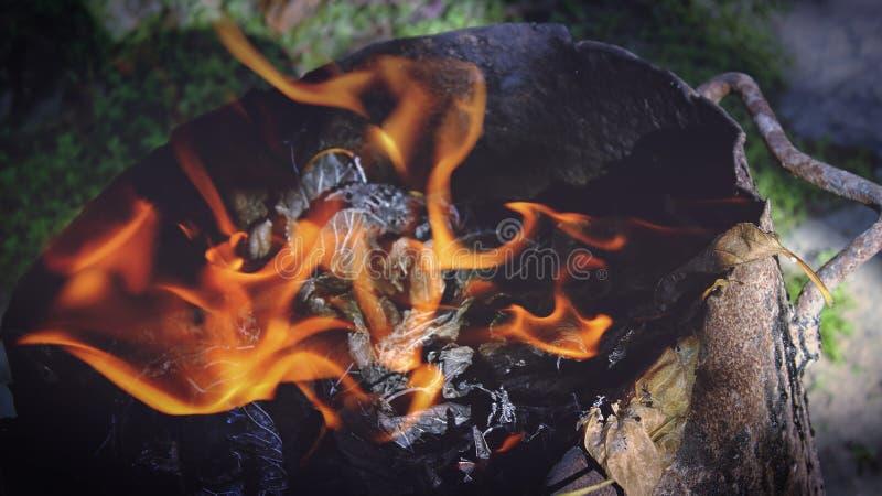 Burning Wood Free Public Domain Cc0 Image