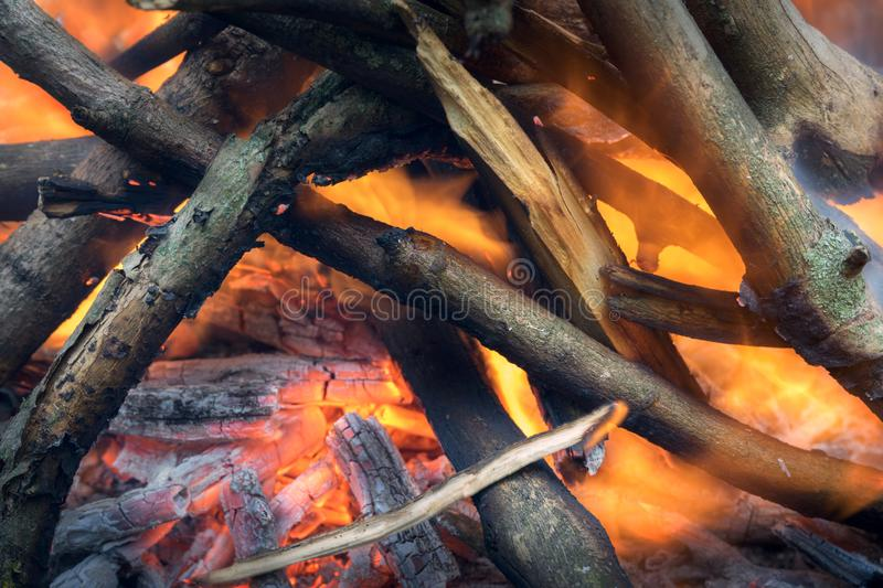 Burning wood in a camp fire stock photos