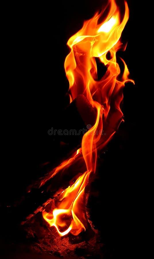 Burning wood in the dark stock image