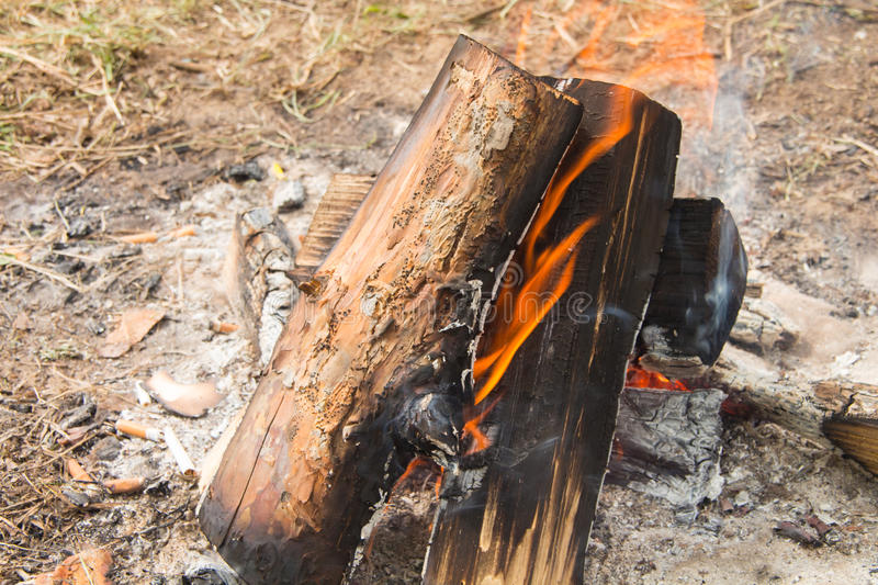 Burning wood in a fire. Outside in the early spring royalty free stock images