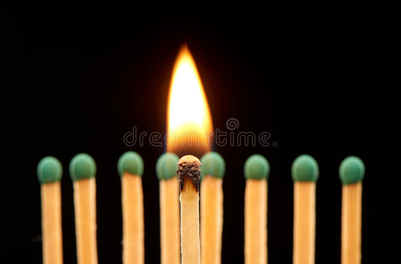 Burning wooden match standing in front of defocused set of eight green matches. Isolated on black background royalty free stock image