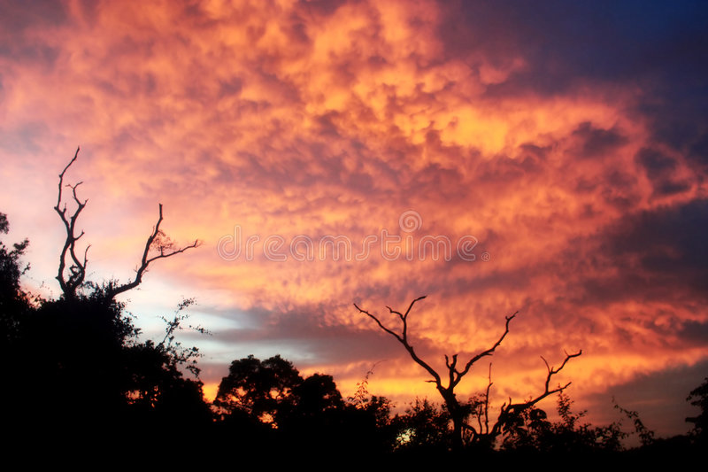 Burnning Himmel stockfoto