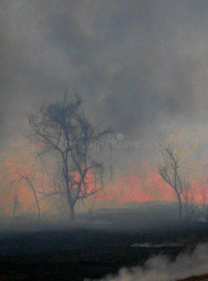Burnoff de la primavera fotografía de archivo