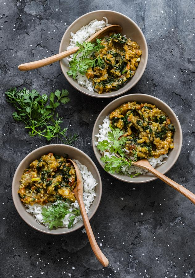 Burnt aubergine spinach vegetarian curry with rice on a dark background, top view. Indian cuisine royalty free stock photo