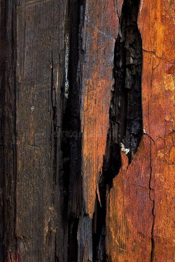 burnt dark wood 1 stock images