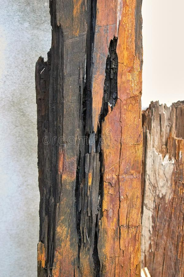 Burnt dark wood 4 stock photos