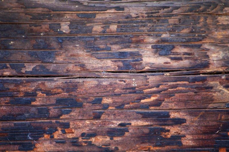 Burnt drewniany tekstury tło fotografia stock