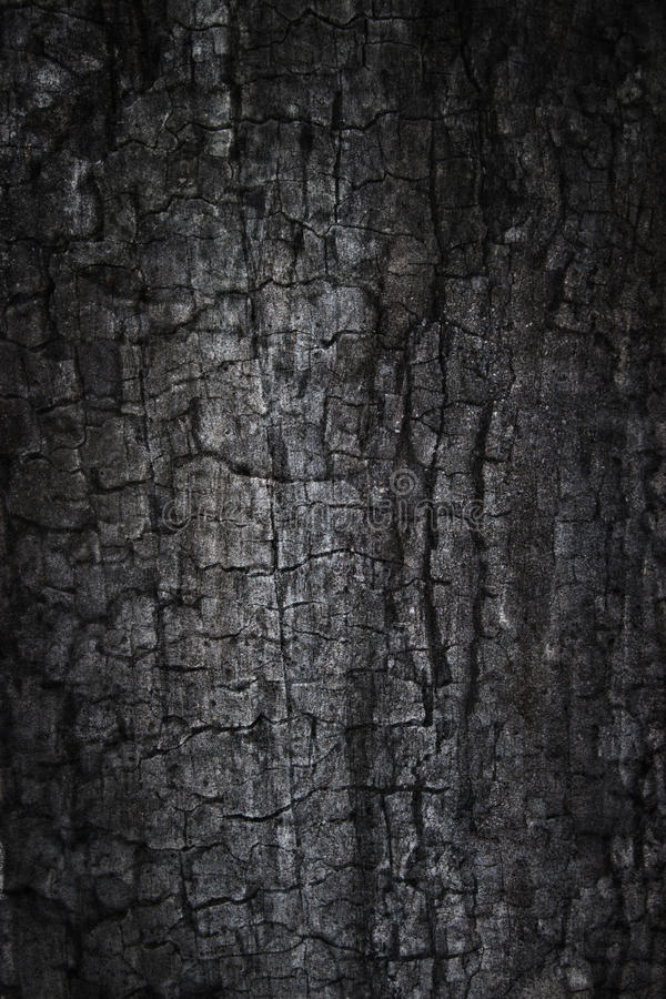 Download Burnt grunge background stock photo. Image of grunge - 21811936