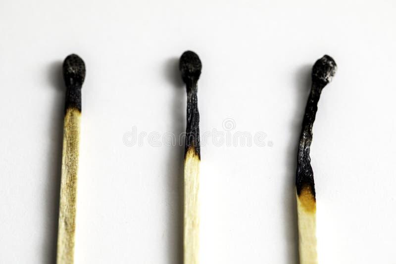 Burnt Matches stock image