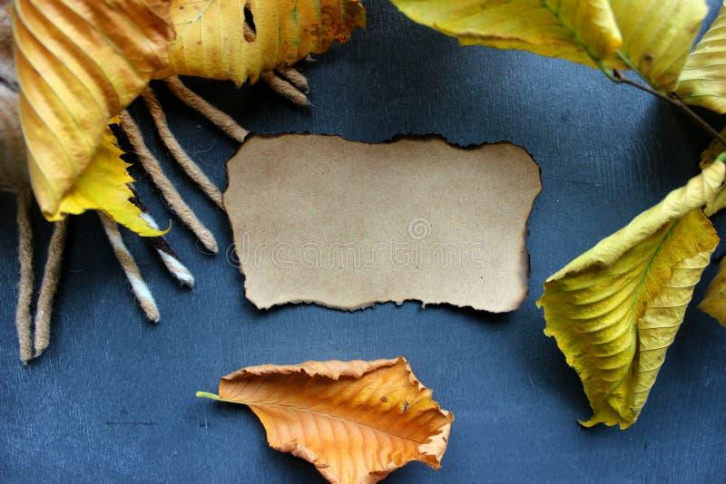 Burnt naturalny papier dla tła otaczającego żółtymi jesień liśćmi obraz stock
