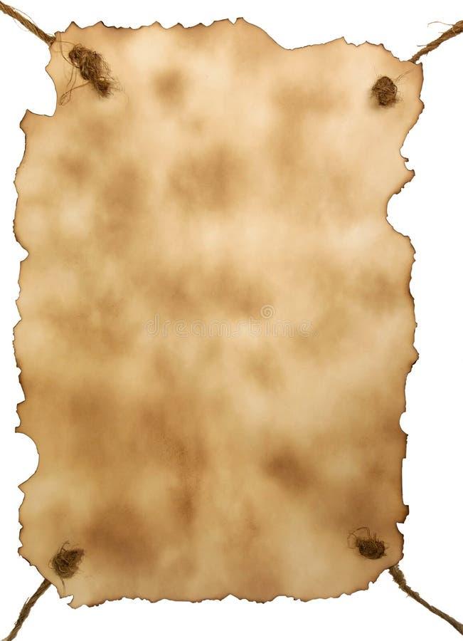 burnt trzymający konopie papier zdjęcia royalty free