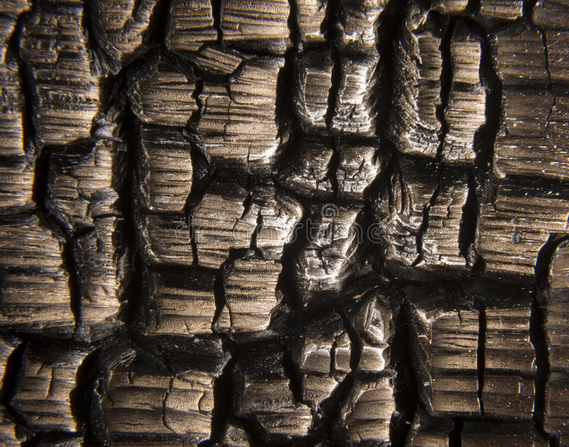 Burnt Wood Macro stock images