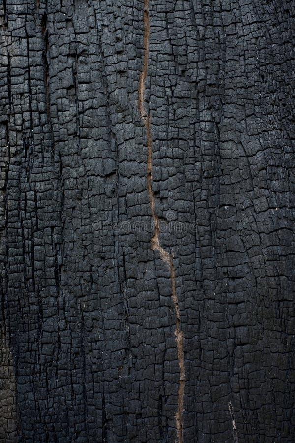 Burnt wood texture. Detail of burnt wood texture stock photo