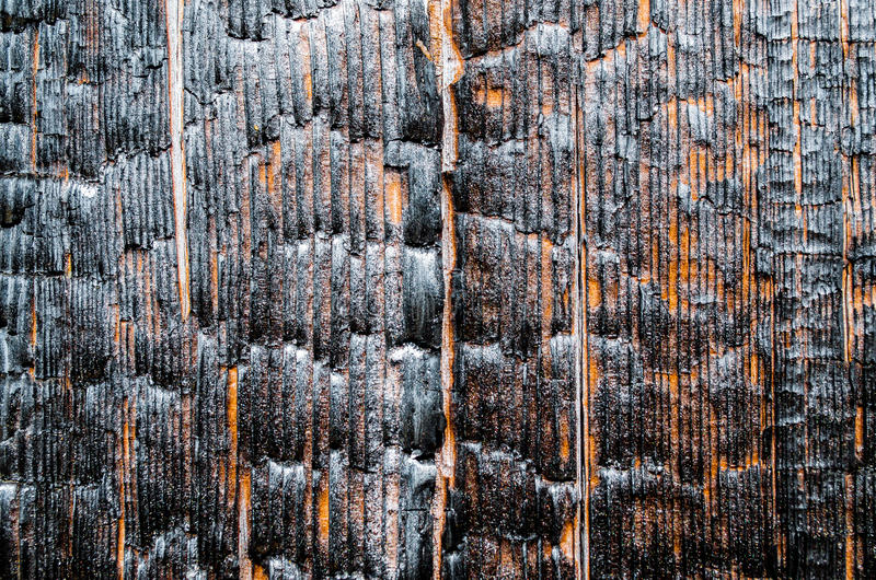 Burnt wood texture near, close-up, bare wood. royalty free stock photography