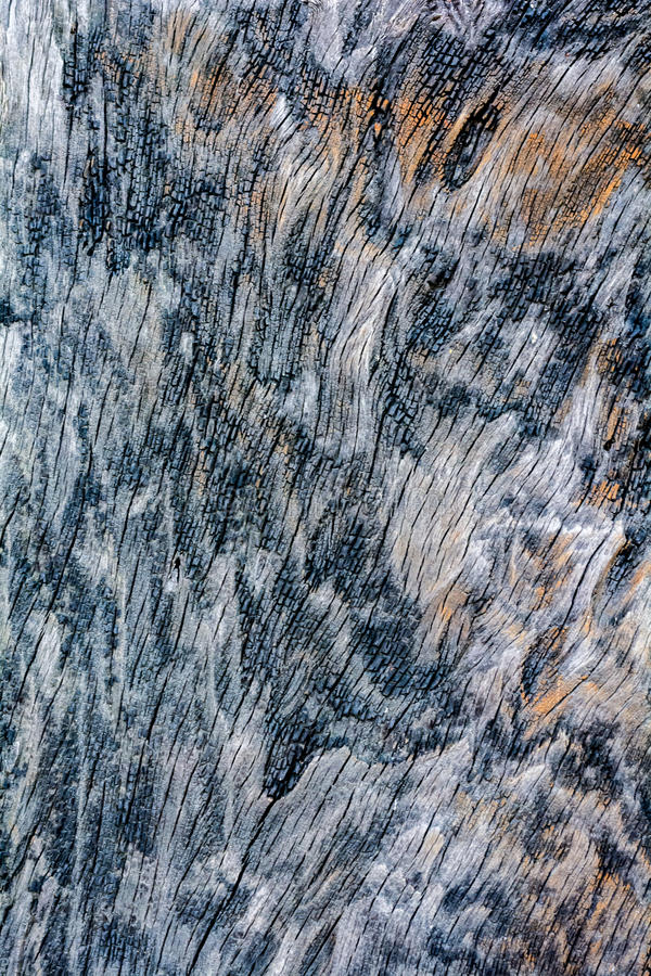 Burnt wood texture. Wood texture.,Wooden background pattern.,Background of burnt wood texture stock images