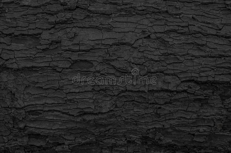 Burnt wooden texture background. Rough black wood surface caused by burning fire. Dark material made from coal or charcoal. Textured stock photos