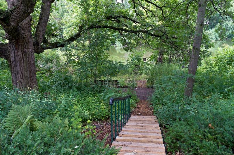 Burr Oak Backyard et escaliers photos libres de droits
