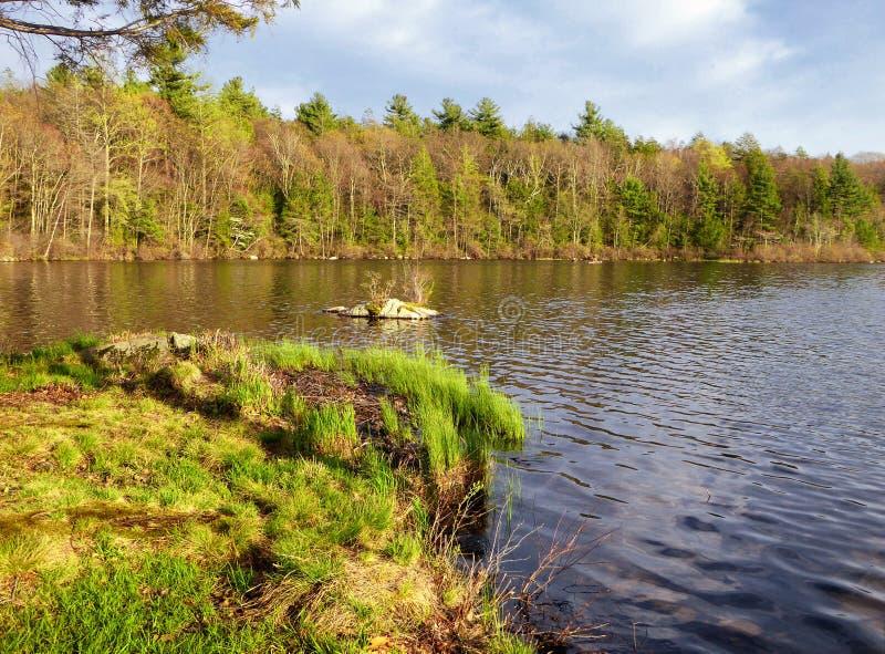 Burr Pond-de mening van de het parklente van de staat royalty-vrije stock foto