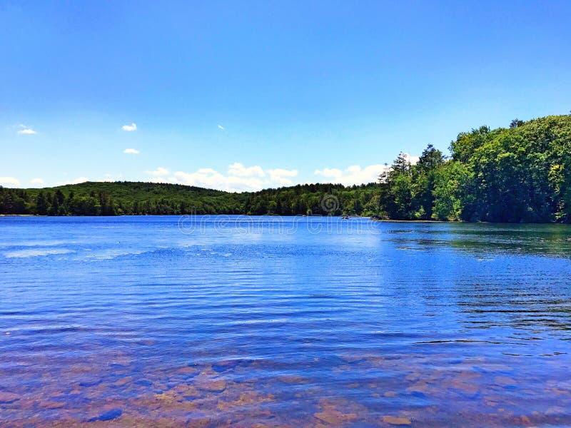 Burr Pond-de mening van de het parkzomer van de staat royalty-vrije stock foto's