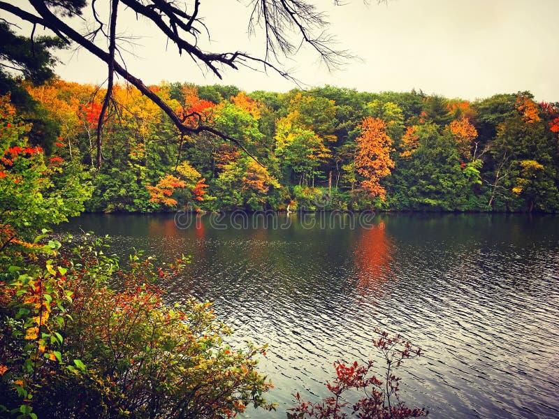 Burr Pond-de mening van de het parkherfst van de staat royalty-vrije stock afbeelding