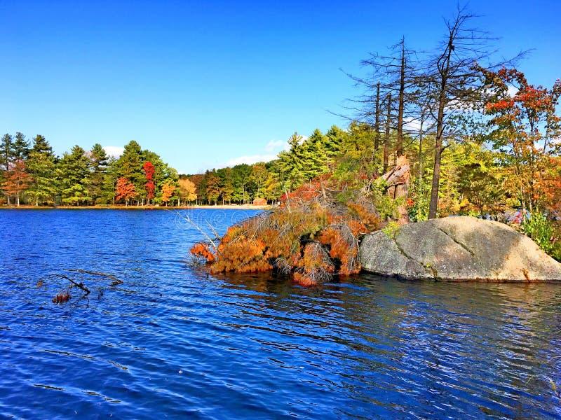Burr Pond-de mening van de het parkherfst van de staat royalty-vrije stock afbeeldingen