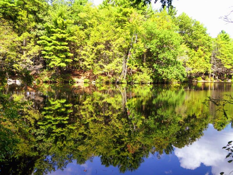 Burr Pond-Nationalpark-Frühlingsansicht lizenzfreie stockfotografie