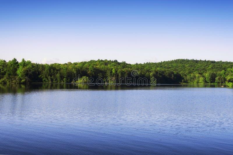 Burr Pond State Park Summer-landschap stock afbeelding