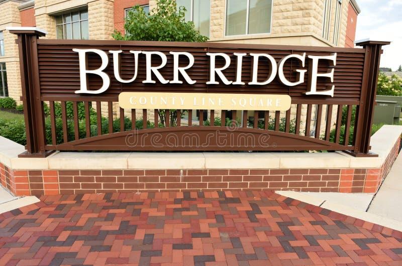 Burr Ridge, Illinois, USA, USA - June 07, 2018: Burr Ridge villa. Ge a suburb of Chicago royalty free stock image