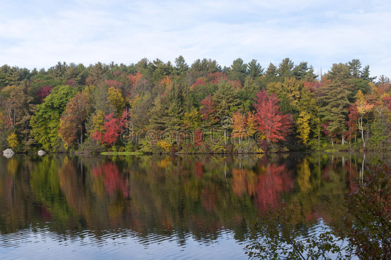 Burr stanu Stawowy park Torrington Connecticut zdjęcie royalty free