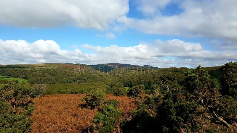 Burrator fördämning Dartmoor nationalpark devon UK fotografering för bildbyråer