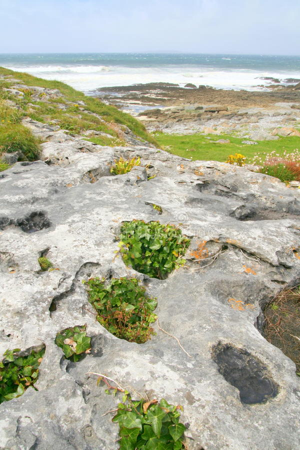Download The Burren, Ireland stock image. Image of ireland, alignment - 10500927