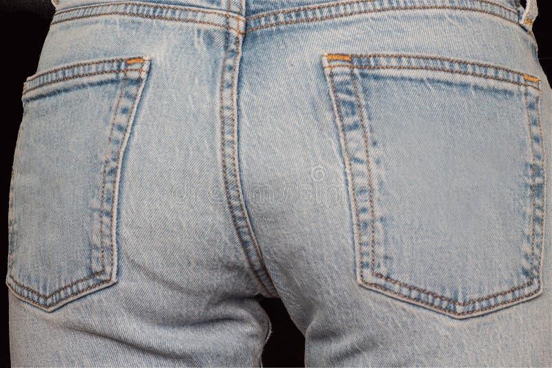 Burro de calças de ganga fotografia de stock royalty free