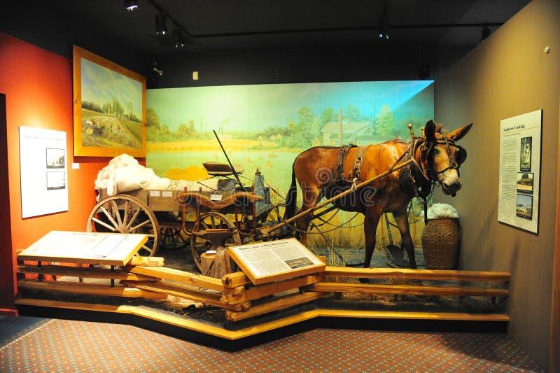 Burro y carro que acarrean el objeto expuesto del algodón en el museo del Tunica en Mississippi del norte imagen de archivo libre de regalías