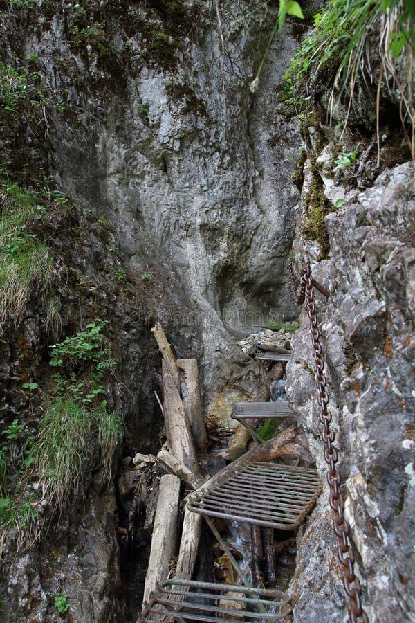 Burrone nel paradiso slovacco del parco nazionale, Slovacchia immagine stock