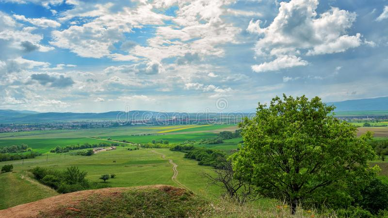 Burrone rosso - Sebes Romania immagine stock