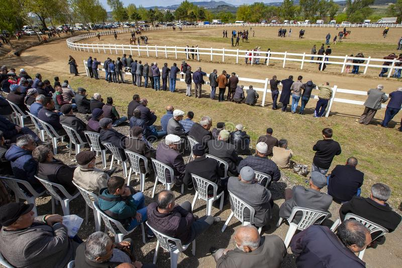 International Conquering Festival Rahvan Horse Racing. Bursa, Turkey - APRIL 21, 2019; XV. Osmangazi International Conquering Festival Rahvan Horse Racing in royalty free stock photo