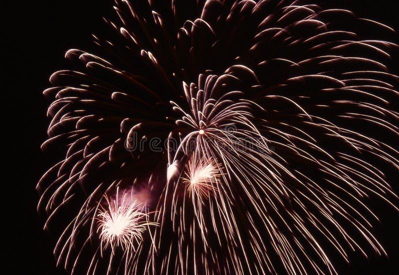 Burst Dei Fuochi D Artificio Fotografia Stock