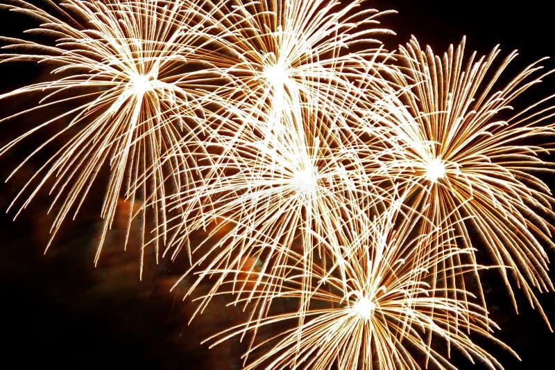 Burst dorati del fuoco d'artificio immagini stock libere da diritti