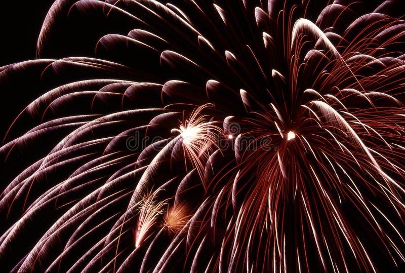 burst fireworks στοκ εικόνες με δικαίωμα ελεύθερης χρήσης