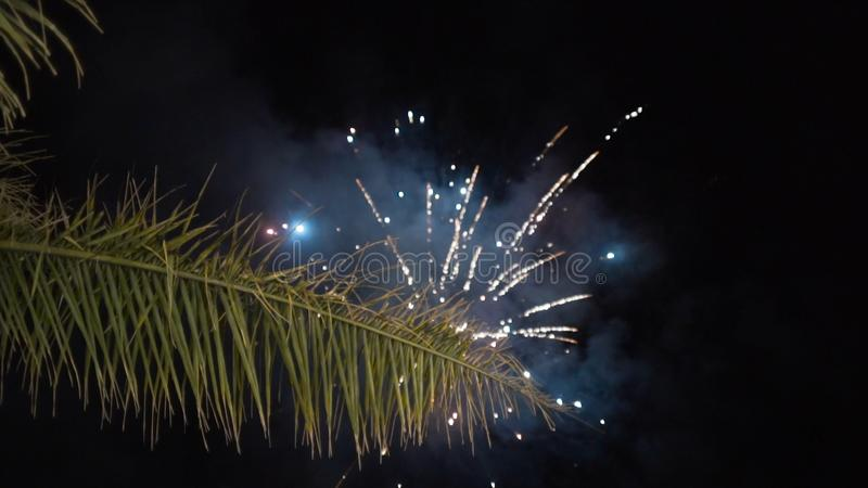 Burst of fireworks in the night sky. Action. Fireworks on a night sky stock photos