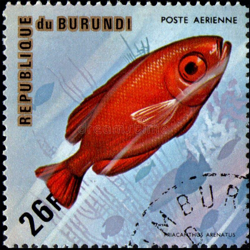 Burundi Editorial Stock Image. Image Of Burundian, African