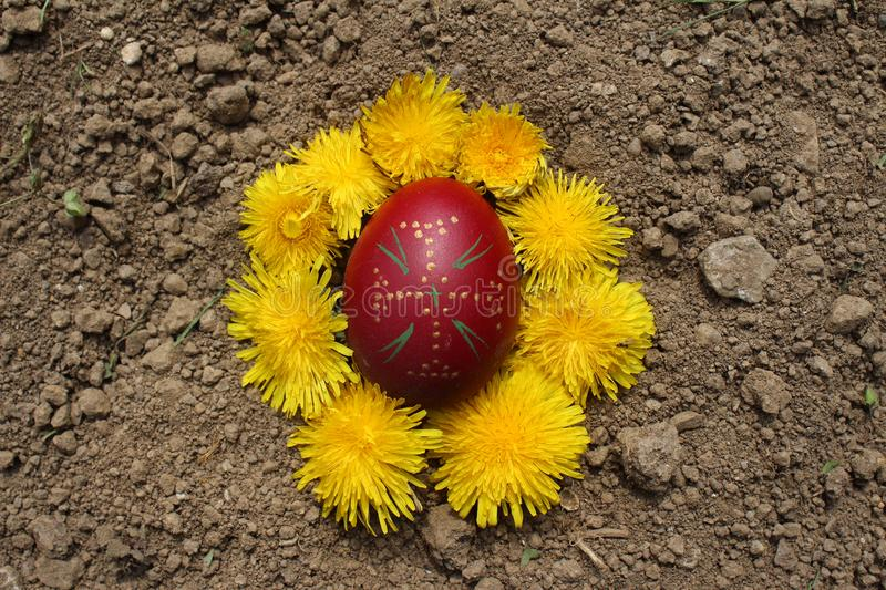 Burying the Old Easter egg in the first furrow of the earth, field. Old Slavic pagan fertility ceremony royalty free stock photos