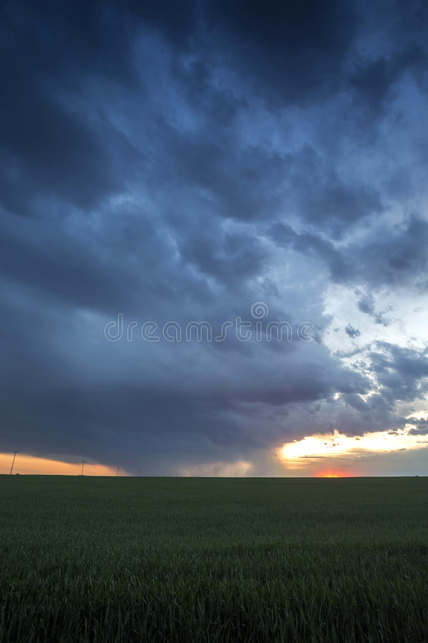 Burza Nad Pszenicznym polem fotografia stock