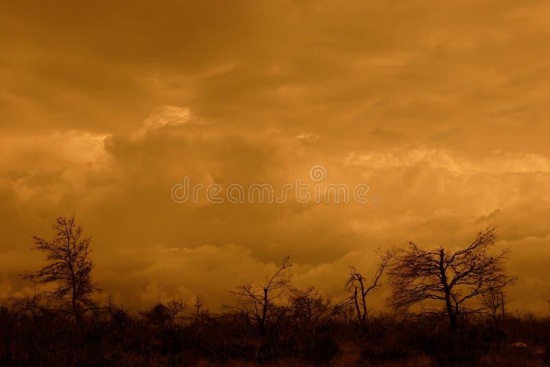 burzliwe krajobrazu zdjęcia royalty free