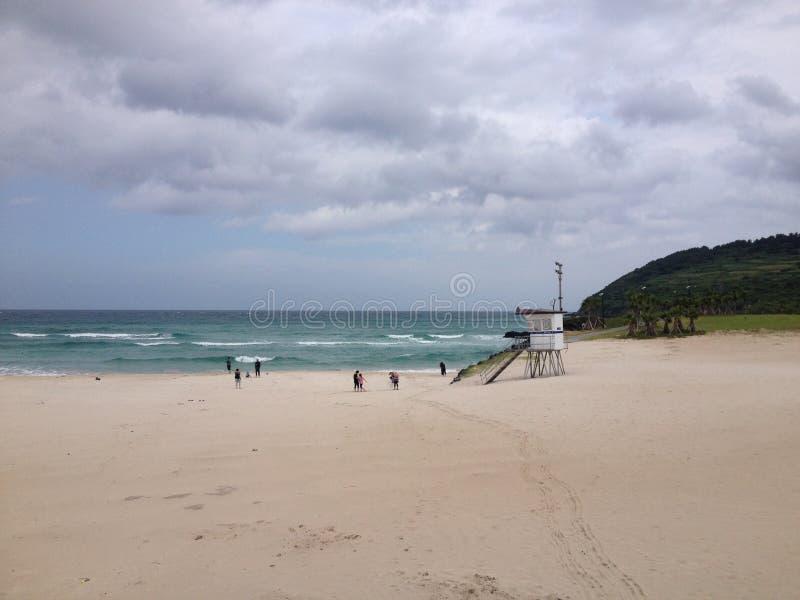 burzliwe na plaży zdjęcia royalty free