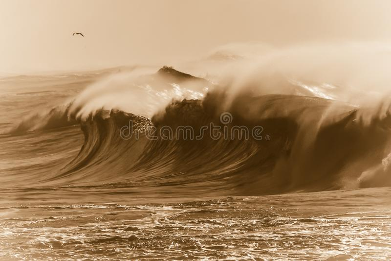 Burzowy Sepiowy morze zdjęcie stock